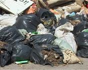 В нашем городе подолгу не вывозят мешки с мусором