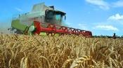 Агрохолдинг Назаровского района и края планирует работать и в Хакасии