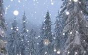 Новогодняя ночь будет теплой