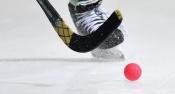 Юных жителей города Назарово научат игре в хоккей с мячом