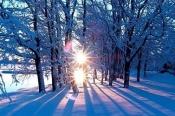 Первый месяц нового года порадует погодой