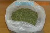 У жителя Назаровского района изъяли более 500 грамм марихуаны