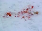 В городе Назарово погиб посетитель кафе