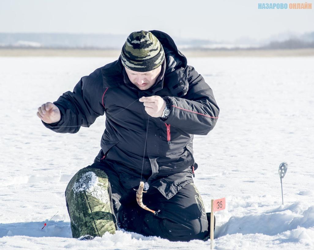 прогноз клева рыбы назарово красноярский край
