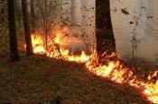 В Назаровском районе готовы к опасному сезону