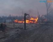 Назаровцев просят не разводить костры и не посещать лес