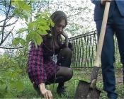 Единственное школьное лесничество озеленяет город Назарово