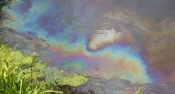 В реку Чулым попало техническое масло