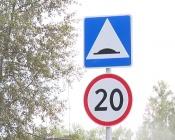 ГИБДД: «…лежачие полицейские» могут быть через каждые 50 метров»
