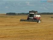 Фермеры края могут получить гранты на развитие сельского хозяйства