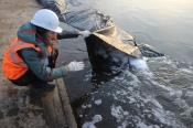 Назаровские угольщики применяют «зеленые» технологии