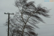 Сильный ветер оставил без электричества несколько улиц города Назарово