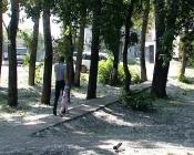 Назаровские рабочие приступили к благоустройству сквера у школы №14