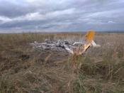 Погибший под Красноярском пилот был уроженцем города Назарово