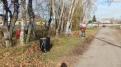 Жители города Назарово не перестают мусорить у себя под носом