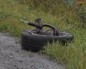 Участник ДТП, в котором погибла семья, уверяет, что у него лопнуло колесо