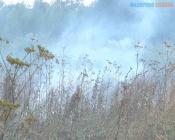 В Назаровском районе оштрафовали главу чудом не сгоревшего поселка