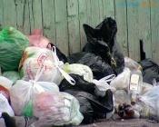 Малообеспеченным помогут заплатить за вывоз мусора