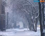 Сокращать школьные каникулы из-за морозов пока не планируют