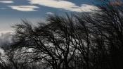 Назаровцев ждёт ветреная погода сегодня и в праздничные дни