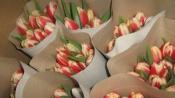 Назаровцы, покупая цветы на улице, рискуют остаться без урожая
