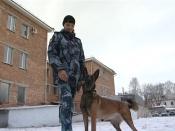 Кинолог и четвероногий полицейский заступили на службу в городе Назарово