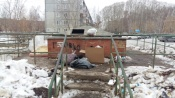 Дорога к школам в городе Назарово завалена мусором