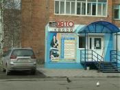 Перевозчик закрыл две автобусные кассы