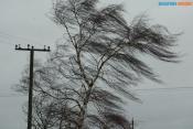 В городе Назарово в четверг будет звучать сирена и дуть сильный ветер