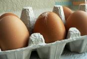 Потолок и стены мешали делать яичный порошок на местной птицефабрике