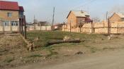 Фонарей слишком много. Жители поселка Строителей просят внести изменения в проект сквера «Яблочный»