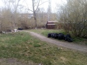 Пока в нашем городе больше тех, кто мусорит. Субботники проходят неактивно