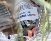 Стоматологу придётся убрать медицинские отходы со свалки в городе Назарово