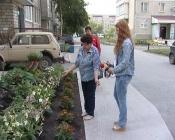 Пара на иномарке в городе Назарово пыталась украсть цветы из двора многоэтажки