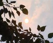 Назаровцев смущает нереально красное солнце на небе, затянутом смогом