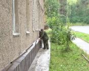 Коммунальщики города Назарово активно готовятся к зиме и делают ремонты