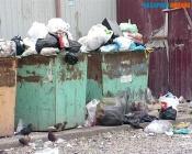 В городе Назарово не планируют установить новые мусорные контейнеры