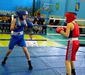 Сюрприз для удачливого болельщика приготовили на турнире по боксу