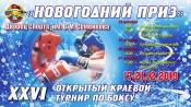 """Турнир по боксу """"Новогодний приз"""""""