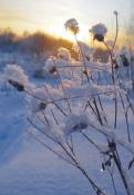 Опасно для метеозависимых: на неделе вновь будут «температурные качели»