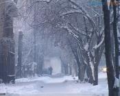 Из-за снегопада водителей попросили ездить медленнее