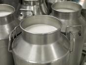 Назаровское предприятие стало одним из лучших в производстве молока