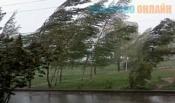 Синоптики прогнозируют сильный дождь и шквалистый ветер