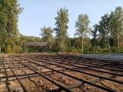 В березовой роще города Назарово появилась удобная дорожка из брусчатки