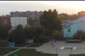 Полчища зелёных мошек появились и на улицах города Назарово