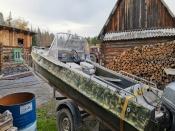 Один убитый лось помог раскрыть целую серию браконьерских вылазок