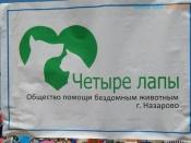 Молодёжь города Назарово помогла собрать корм для бездомных животных