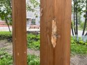 Возле музейно-выставочного центра сломали новые качели