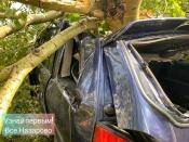 Короткий ураган парализовал в городе движение, обесточил некоторые микрорайоны, повалил столбы и деревья