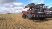 Агрохолдинг «Сибагро» приступил к уборочной кампании в Назаровском районе